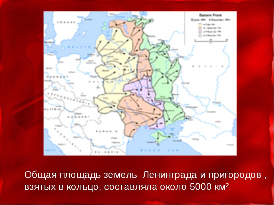 Общая площадь земель Ленинграда и пригородов , взятых в кольцо, составляла ок...