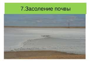 7.Засоление почвы