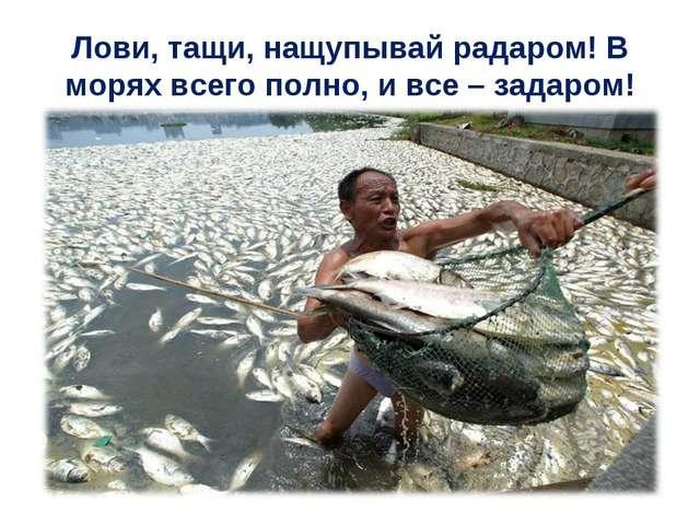 Лови, тащи, нащупывай радаром! В морях всего полно, и все – задаром!