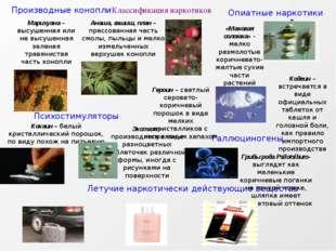 Классификация наркотиков Производные конопли Психостимуляторы Опиатные наркот