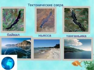 Тектонические озера байкал ньясса танганьика