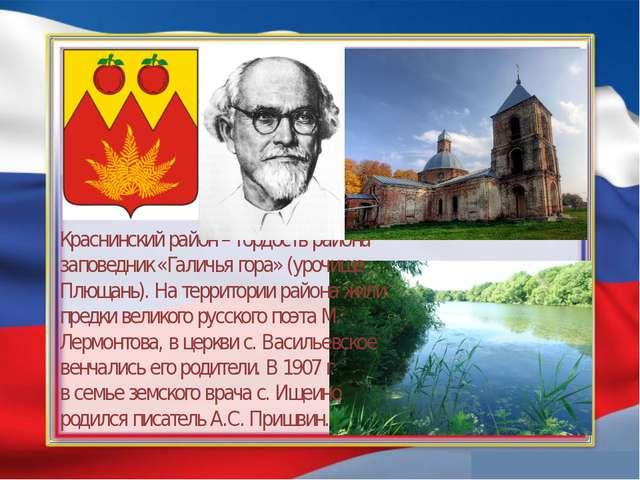 Краснинский район – гордость района заповедник «Галичья гора» (урочище Плюща...