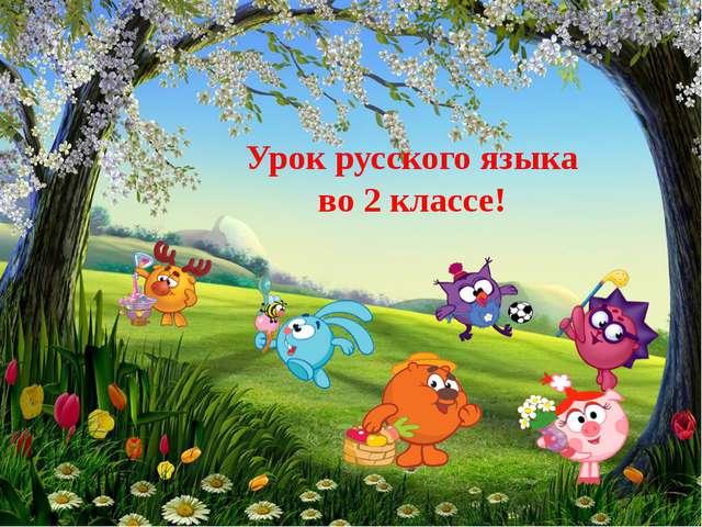 Урок русского языка во 2 классе!