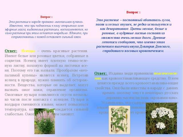 Вопрос : Это растение в народе прозвано «неопалимая купена». Известно, что п...