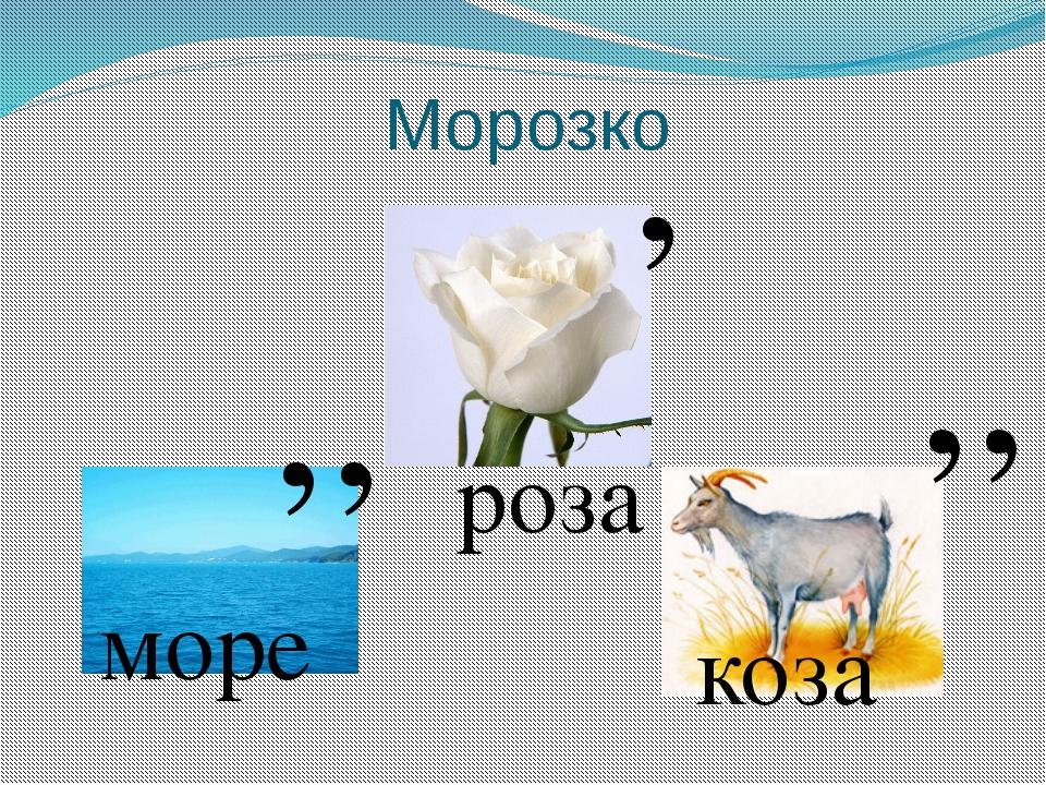 Морозко , , , , , море роза коза