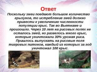 Ответ Поскольку змеи поедают большое количество грызунов, то истребление змей
