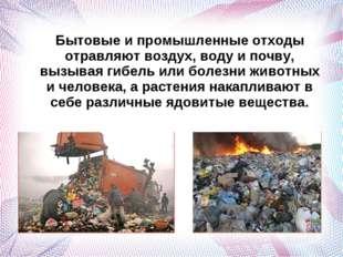 Бытовые и промышленные отходы отравляют воздух, воду и почву, вызывая гибель