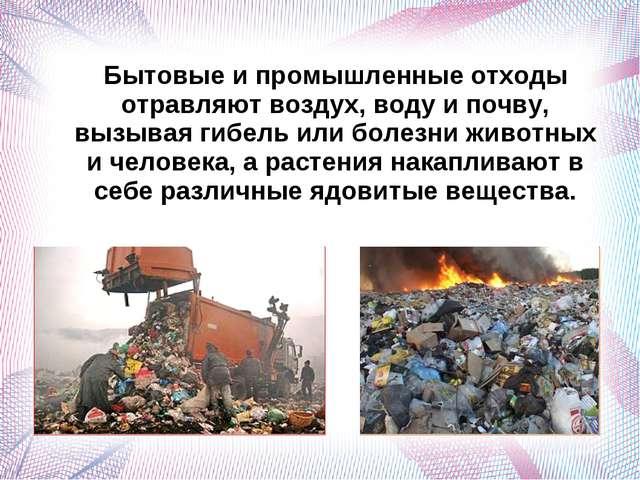 Бытовые и промышленные отходы отравляют воздух, воду и почву, вызывая гибель...