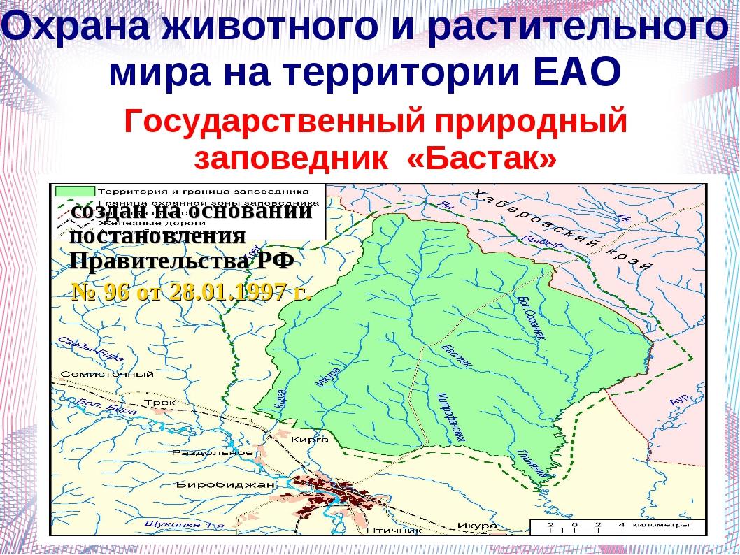 Охрана животного и растительного мира на территории ЕАО Государственный приро...