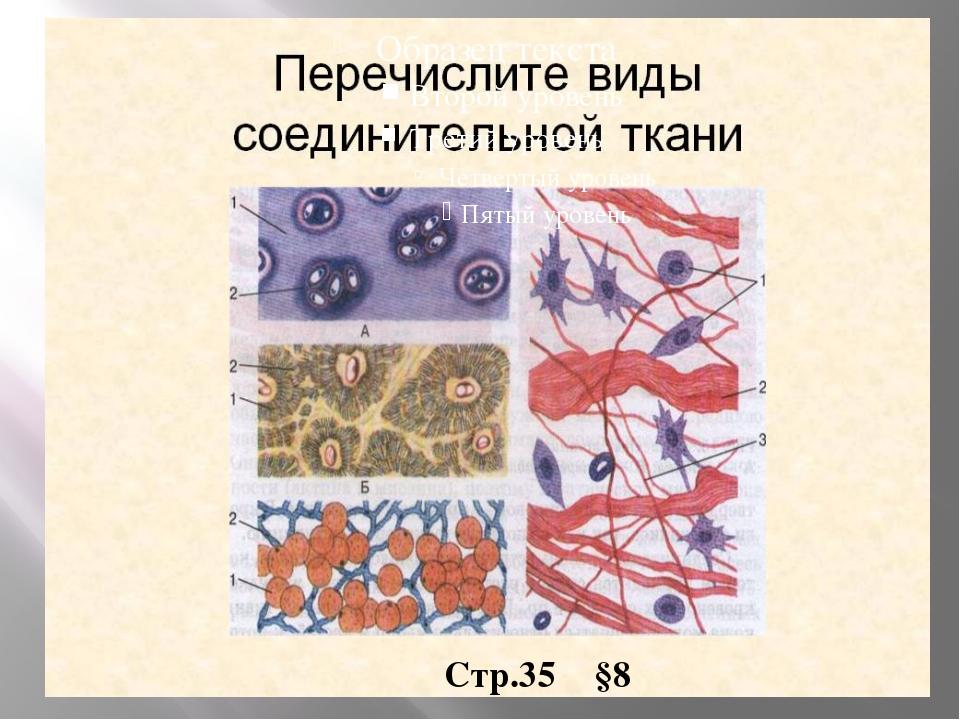Стр.35 §8