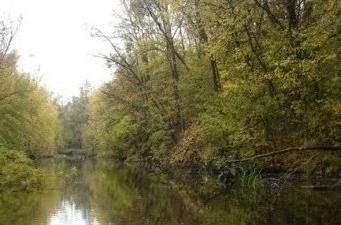 Фото реки Уса