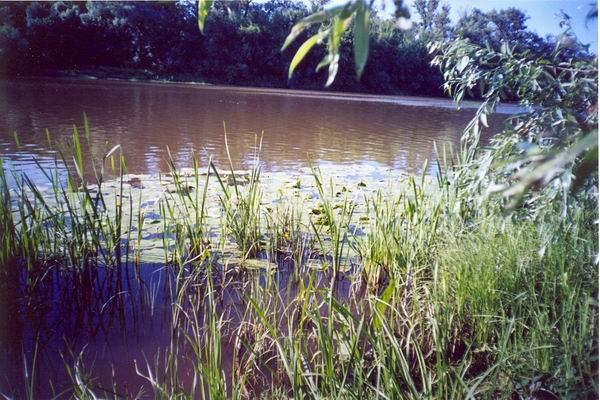 Река Большой Кинель