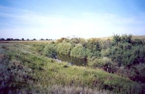Фото реки Тишерек