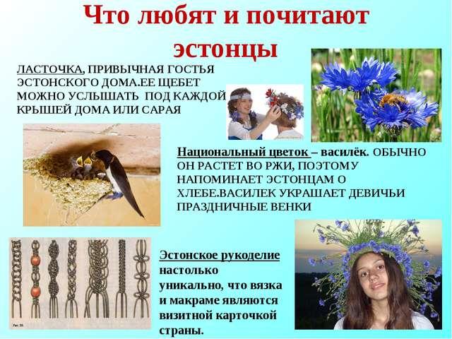 Что любят и почитают эстонцы ЛАСТОЧКА, ПРИВЫЧНАЯ ГОСТЬЯ ЭСТОНСКОГО ДОМА.ЕЕ ЩЕ...