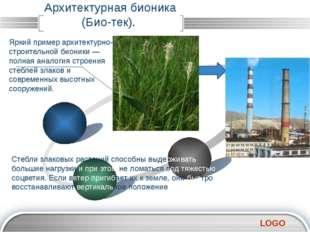 Архитектурная бионика (Био-тек). Яркий пример архитектурно-строительной бион
