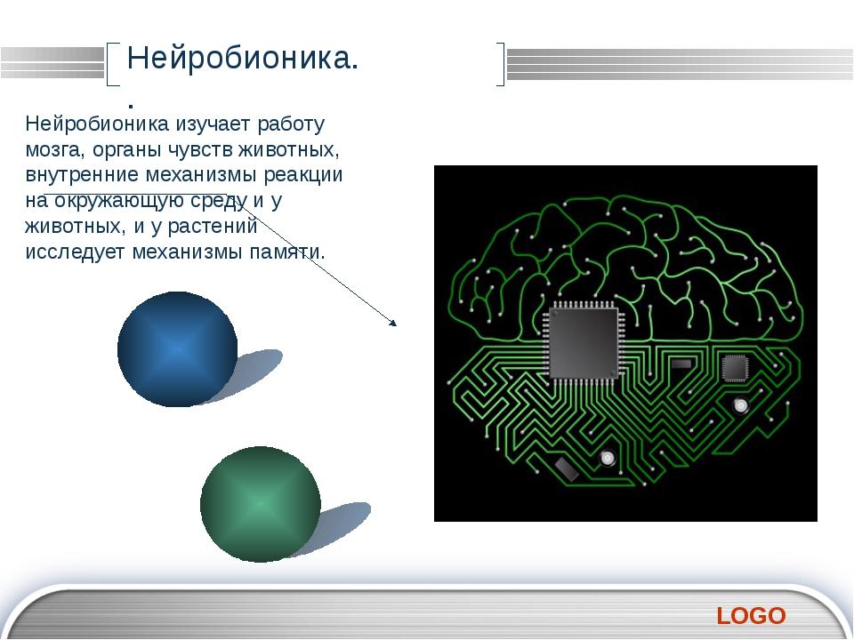 Нейробионика. . Нейробионика изучает работу мозга, органы чувств животных, в...