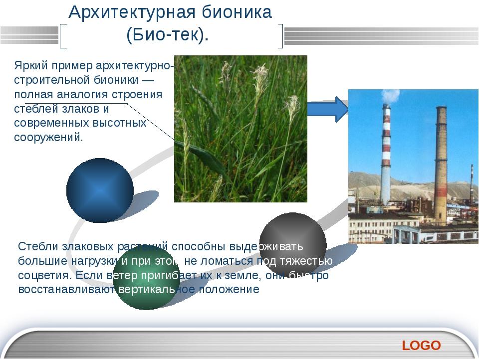 Архитектурная бионика (Био-тек). Яркий пример архитектурно-строительной бион...
