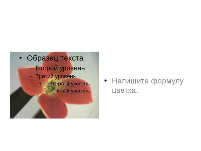 Напишите формулу цветка.