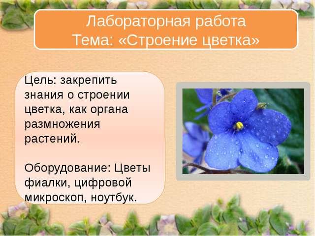 Цель: закрепить знания о строении цветка, как органа размножения растений. Об...