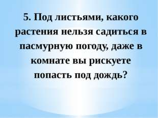 5. Под листьями, какого растения нельзя садиться в пасмурную погоду, даже в к