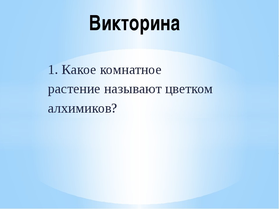 1. Какое комнатное растение называют цветком алхимиков? Викторина