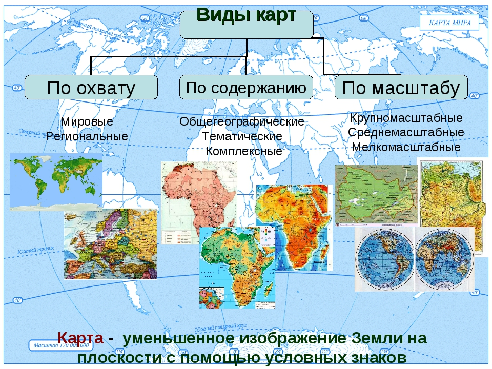 Мировые Региональные Общегеографические Тематические Комплексные Крупномасшта...