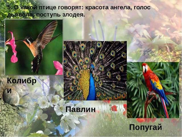 5. О какой птице говорят: красота ангела, голос дьявола, поступь злодея. Коли...