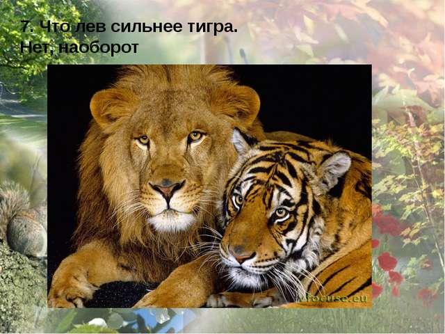 7. Что лев сильнее тигра. Нет, наоборот