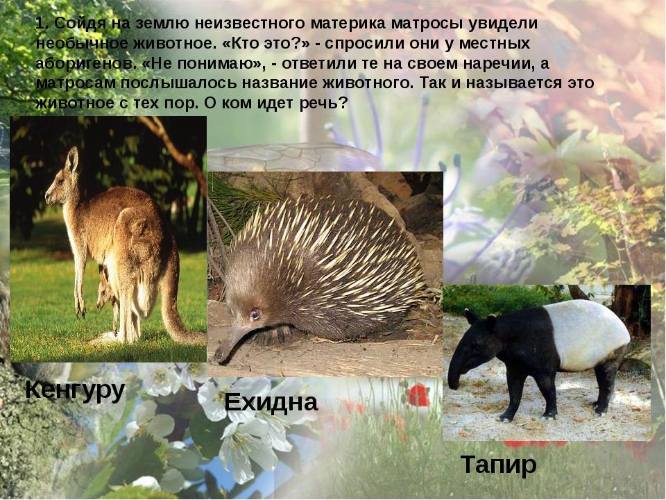 1. Сойдя на землю неизвестного материка матросы увидели необычное животное. «...
