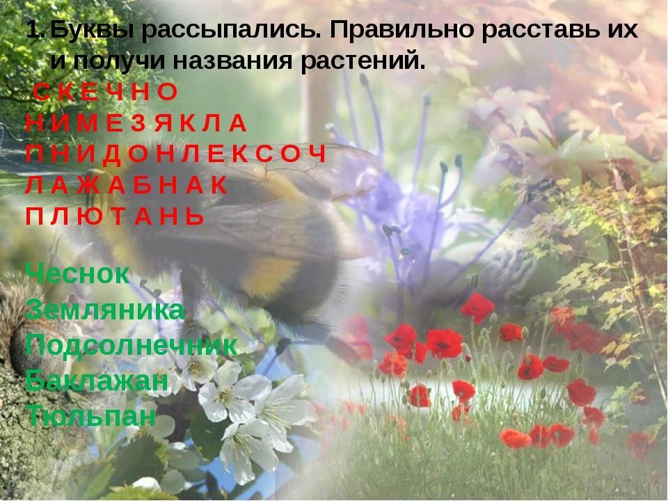 Буквы рассыпались. Правильно расставь их и получи названия растений. С К Е Ч...