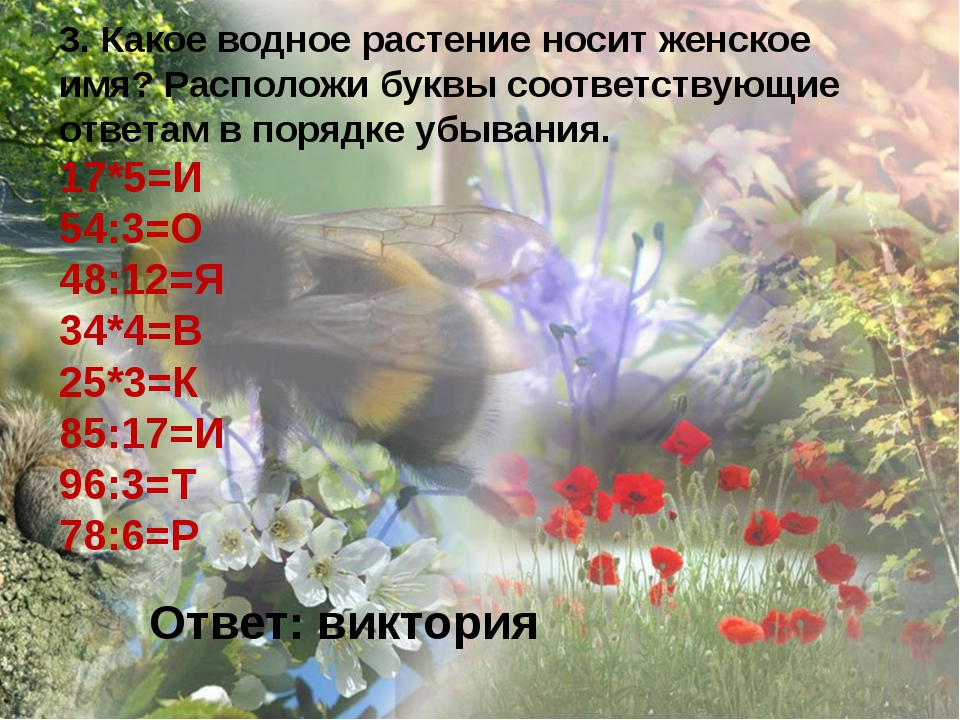 3. Какое водное растение носит женское имя? Расположи буквы соответствующие о...