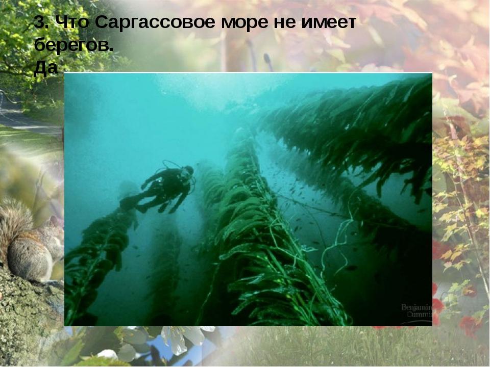 3. Что Саргассовое море не имеет берегов. Да