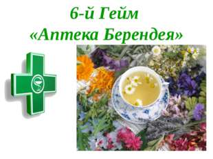 6-й Гейм «Аптека Берендея»