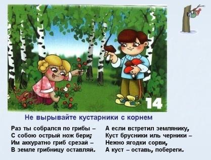 0015-015-Ne-vyryvajte-kustarniki-s-kornem.jpg