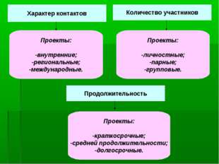 Характер контактов Количество участников Продолжительность Проекты: -внутренн