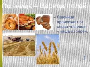 Пшеница происходит от слова «пшено» – каша из зёрен. Пшеница – Царица полей.