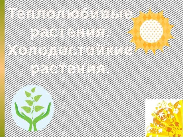 Теплолюбивые растения. Холодостойкие растения.