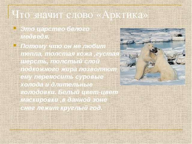 Что значит слово «Арктика» Это царство белого медведя. Потому что он не любит...