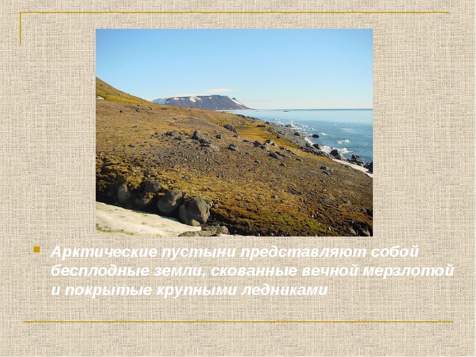 Арктические пустыни представляют собой бесплодные земли, скованные вечной мер...