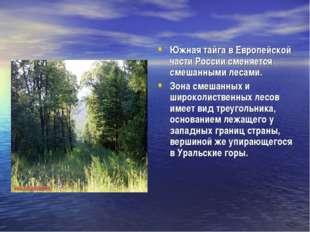 Южная тайга в Европейской части России сменяется смешанными лесами. Зона см