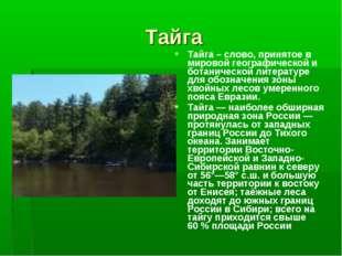 Тайга Тайга – слово, принятое в мировой географической и ботанической литерат