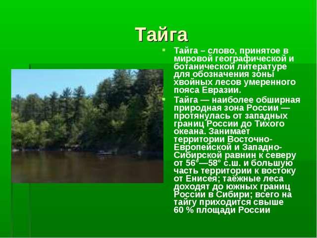 Тайга Тайга – слово, принятое в мировой географической и ботанической литерат...