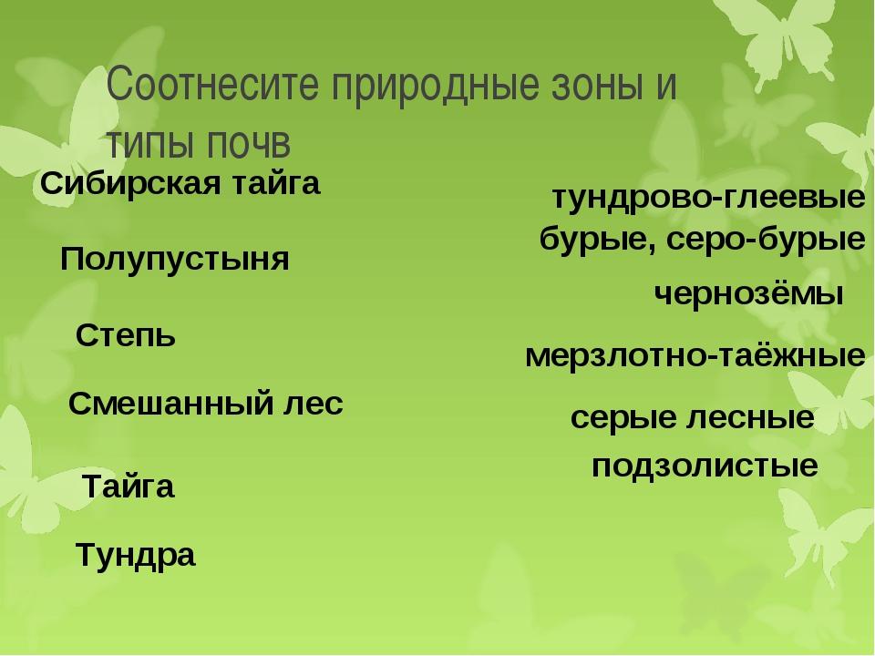 Соотнесите природные зоны и типы почв Тундра подзолистые Тайга мерзлотно-таёж...