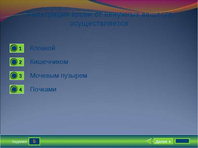 5 Задание Фильтрация крови от ненужных веществ осуществляется Клоакой Кишечни...