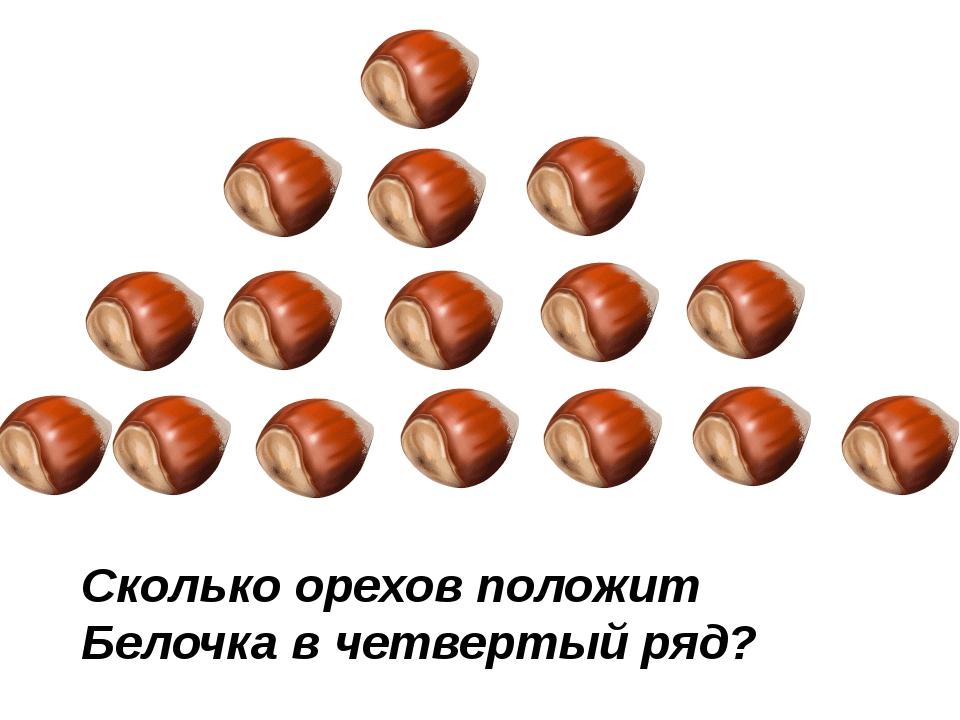 Сколько орехов положит Белочка в четвертый ряд?