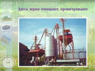 Здесь зерно очищают, проветривают