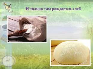 И только там рождается хлеб