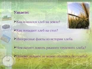 Узнаете: Как появился хлеб на земле? Как попадает хлеб на стол? Интересные ф