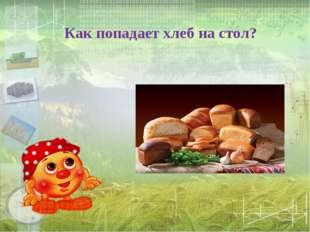 Как попадает хлеб на стол?