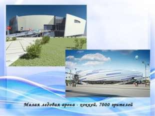 Малая ледовая арена - хоккей, 7000 зрителей